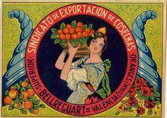 Carteles de naranjas de Sindicato de Exportación de Cosechas
