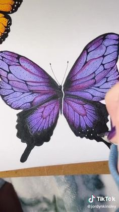 Butterfly Painting, Butterfly Art, How To Draw Butterfly, Colorful Butterfly Drawing, Butterfly Sketch, Butterfly Watercolor, Marker Kunst, Marker Art, Art Drawings Sketches Simple