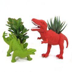 Dino Succulents!