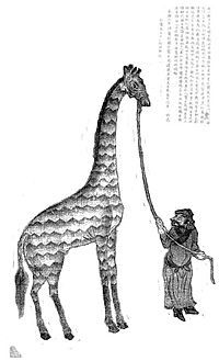 In when the Chinese Emperor first saw a giraffe he thought it was the mythical creature the Qilin Zheng He, Myths & Monsters, Chinese Emperor, Books Australia, Penguin Books, Mythical Creatures, Giraffe, Lion Sculpture, Hero