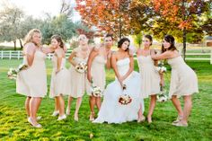 The bridesmaids shot. Wedding pictures
