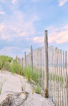 Sand fence
