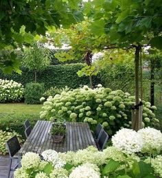 Garden design isn't only about earning your garden more attractive, but is also . Garden design isn't only about earning your garden more attractive, but is also essential in making it more functional. A little garden design differs. White Gardens, Small Gardens, Outdoor Gardens, Indoor Garden, Amazing Gardens, Beautiful Gardens, Design Jardin, Small Garden Design, House Garden Design