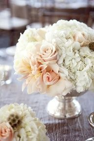 champagne blush flowers and dusty miller - Google Search