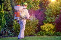 Here are several tips to help you find a reliable pest control company to get the best results. Best Pest Control, Pest Management, Cool Suits, Online Courses, Good Things, Count, Environment, Cleaning, Future