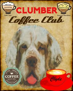 Clumber Spaniel Dog Coffee Club Art Poster Print by SwiftArtStudio, $23.00