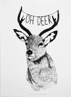 Mini and Maximus Oh deer
