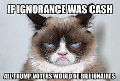 ....says Grumpy Cat