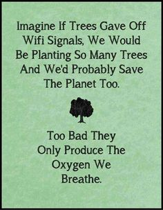 TOP IRONY quotes and sayings : Imagine if trees gave off wifi signals, we would be planting so many trees and we'd probably save the planet too. Too bad they only produce the oxygen we breathe. Great Quotes, Me Quotes, Inspirational Quotes, Daily Quotes, Wisdom Quotes, Irony Quotes, Rich Quotes, Humour Quotes, Motto Quotes