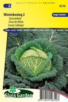 semena kel zeleniny kvetov bylinky sadit pestovat rajcin paprika uhoriek bazalka jahody