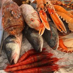 Fish anyone? Lunch is served @amandacarolinecronin @safiasem @karinamarchenko by victoriasilvstedt