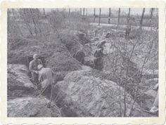 Bunkers in de Grebbelinie, dijk langs de oostzijde van de ...