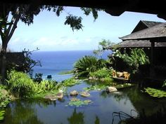 Inside David Bowie's magical Isle of Mustique holiday villa