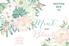 Vector Watercolor Mint and Blush Clipart EPS