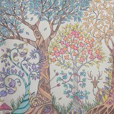 Floresta Encantada/ Floresta /Johanna Basford