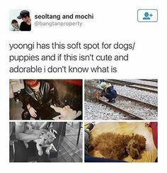 its bc his soul is a puppy. hes intimidating when he wants to be but hes literally the cutest softie Bts Bangtan Boy, Bts Boys, Jimin, K Pop, Seokjin, Namjoon, Agust D, Min Suga, About Bts