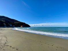 Stamane passeggiata sulla spiaggia respirando salmastro e guardando le evoluzioni dei surfisti in acqua. Ho anche pensato per un attimo di andarmi a mettere la muta e entrare ma alla fine ho optato per un pezzo di focaccia...   #OasiLevanto #Levanto #VisitLevanto #Italy #postcardsoftheworld #beautifuldestinations #magicalmoments #splendid_earth  #lamiaLiguria #ig_liguria #CinqueTerre Muta, Hotel, Cinque Terre, Beach, Outdoor, Instagram, Outdoors, The Beach, Outdoor Games