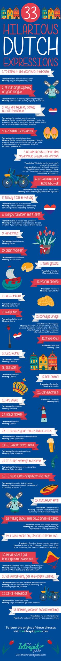 funny dutch phrases Idioms and expressions infographic