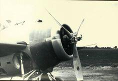 Grumman, XF4F-2, Wildcat