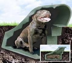 57 Diy Pet Bed Comfy Beds To Fit Your Pets Cool Stuff