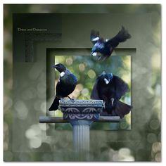Print, Art Photography, Photo Art, Photo, Fine Art, Canvas Prints, Photography, Illusions, Art