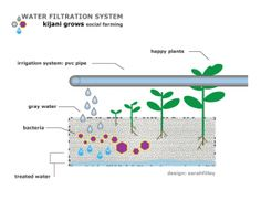 Преимущества Aquaponics  использует только 2-10% воды используется в обычном сельском хозяйстве 10 раз больше, чем производить как обычной фермерской Продукты, выращенные в любом месте безопасный источник свежих здоровых овощей и рыбы ОТСУТСТВИЕ СОРНЯКИ или почвы на основе ошибок