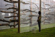 dead garden by carlos teixeira | designboom