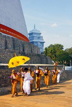 Procession of Buddhist nuns, Anuradhapura, Sri Lanka Anuradhapura Sri Lanka, Buddhist Nun, Orient Express, Le Far West, North Africa, Worlds Of Fun, Umbrellas, East Coast, Buddhism