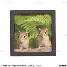 Sweet Baby Chipmunk Siblings Premium Jewelry Boxes