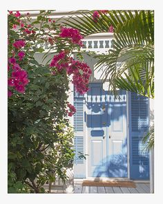 Fine+Art+Photography+Print+Coastal+Tropical+by+cottagelightstudio,+$30.00