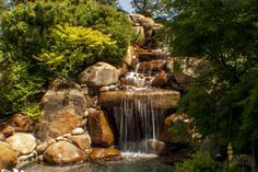 Waterfalls & Ponds backyard oasis