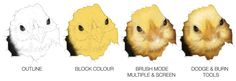 MUNRO DESIGNS BLOG - Step by step of digital painting, easter chick