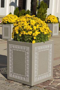 Flower Pod Kamien Komancza