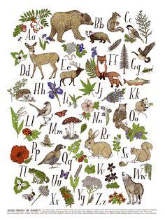 hiking through the alphabet // Frida Clements Creative