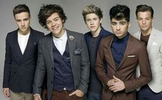 One direction Harry Styles  and Louis Tomlinson and Liam Payne and Niall Horan and Zayn Malik look nice