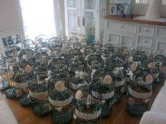 bird cages as wedding centerpieces - Google Search