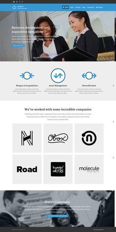 Acquire WordPress Business Specialists Theme - www.wpchats.com