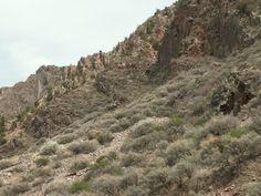 Taos NM, 2008