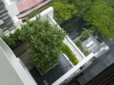 The Newton Suites residential tower in Singapore_Sky Garden