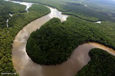 Kinabatangan River in Malaysian Borneo. Photo by Rhett A. Butler