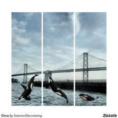 Shop Orca Triptych created by InteriorDecorating. Triptych Wall Art, Wood Wall Art, Wall Art Decor, Wildlife Art, Illusions, Wall Decals, Prints, Poster, Wooden Wall Art
