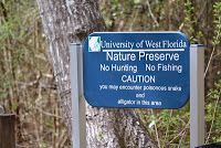 Home Is Where the Navy Sends Us: Pensacola, Florida & Surrounding Area: What To Do, Where To Go  ::UWF Nature Preserve