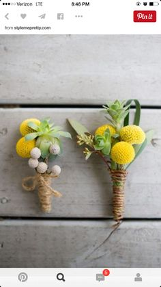 Succulent corsage, Succulents and Wedding boutonniere on ...