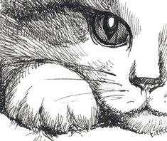 Items similar to Cat tshirt Hiding Kitten Cat Kitty Cat Lover Cute Gift Pet Animal Art Print Mens Cat Shirt – T-shirt – Sizes S, M, L, XL, XXL on Etsy Tshirt do gato Esconder gatinho gato gatinho gato amante bonito por catssecret Pencil Art Drawings, Cat Drawing, Painting & Drawing, Animal Sketches, Animal Drawings, Cat Sketch, Cat Art, Cats And Kittens, Tabby Cats