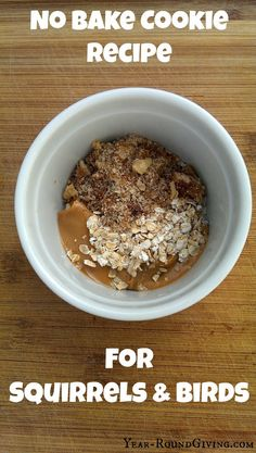 No Bake Cookie recipe for Squirrels & Birds. Uses ingredients that are already in your pantry. #birding #squirrels #gardening