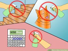 How to Make Catnip Spray: 12 Steps (with Pictures) - wikiHow