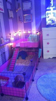 Diy Bunny Cage, Diy Guinea Pig Cage, Guinea Pig House, Bunny Cages, Pet Guinea Pigs, Rabbit Cages, Pet Bunny Rabbits, Pet Rabbit, Animal Room