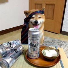 Shiba Inu Berry knows how to let the good times roll! Shiba Inu, Cute Funny Animals, Funny Dogs, Animals And Pets, Baby Animals, Cute Puppies, Cute Dogs, Japanese Dogs, Loyal Dogs