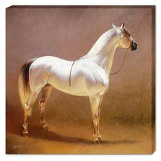 Horse/Equine art glicee prints by Jaime Corum. Pretty Horses, Beautiful Horses, Horse Artwork, Horse Portrait, Horse Drawings, Animal Paintings, Horse Paintings, Horse Pictures, Horse Photos