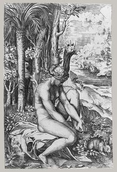Venus Wounded by the Rose's Thorn, ca. 1516  Marco Dente da Ravenna
